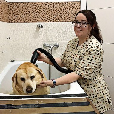 chari-centro-veterinario-toffe